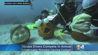 Halloween Spirit Comes Alive At Underwater Pumpkin Carving Contest