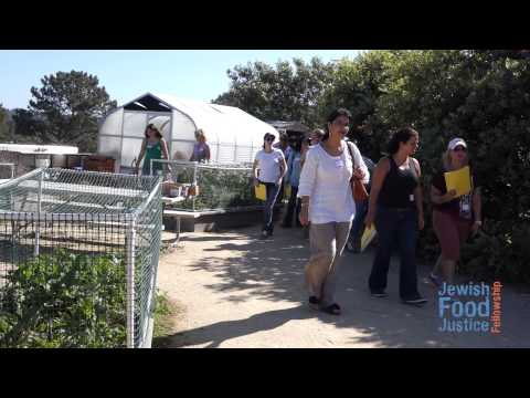 JFJF Environmental Education at Levana's Garden, San Diego Jewish Academy