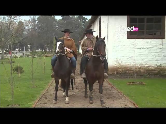 Rodeo y Chilenidad Domingo 7 de Septiembre 2014