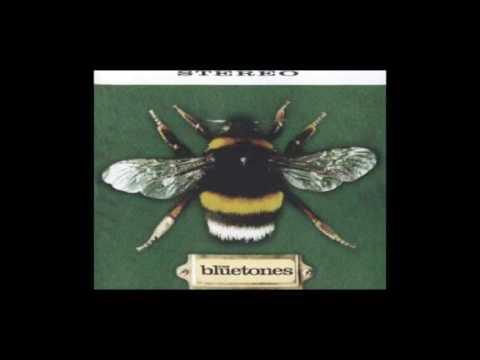 Bluenotes - Colorado Beetle