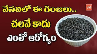 Summer Drinks Recipe at Home | Health Benefits of Sabja Seeds | Sabja Ginjalu Uses