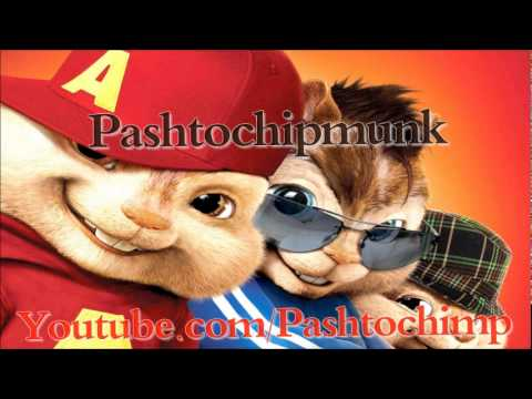 Pashto New Chipmunk Song 2011 Of Nazia Iqbal Ay Zama Yaara video