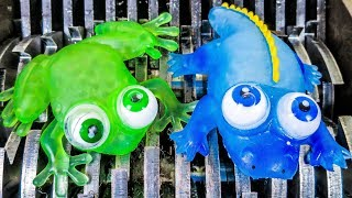 Shredding Frog and Alligator Squishies!  What's Inside Squishy Frog and Alligator Water Bath Toys?
