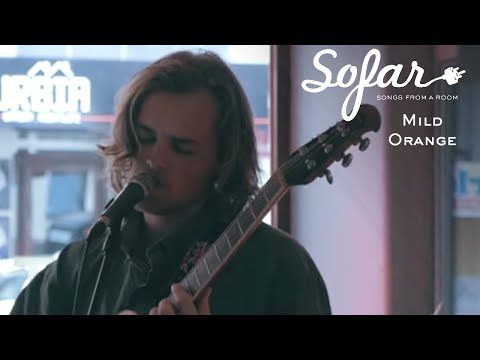 Mild Orange - Mysight  Sofar Dunedin