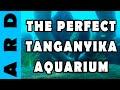 Setting up the Perfect Tanganyika Aquarium mp3 indir