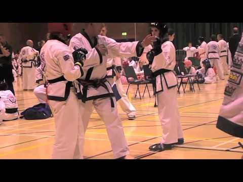 WTSDA Wales Tang Soo Do Nationals 2013 Image 1