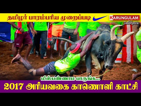 Karungulam Jallikattu @2017 #1