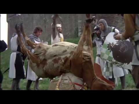Monty Python And The Holy Grail video