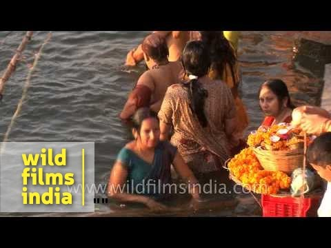 Women Bathing In Ganges River During Shivratri, Varanasi video