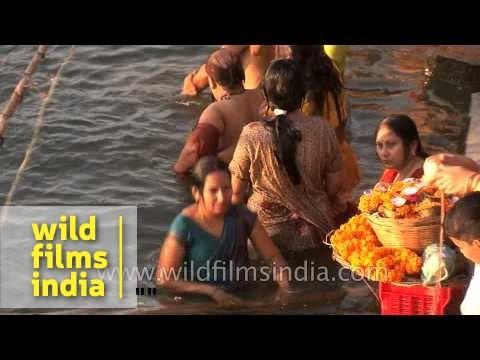 Women Bathing In Ganges River During Shivratri, Varanasi video