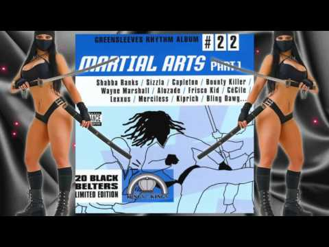 Martial Arts Riddim Mix drbeansoundz [2002 King Of Kings] video