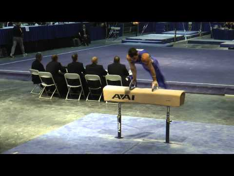 Brandon Wynn - Pommel Horse - 2012 Winter Cup Prelims