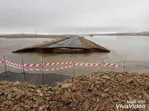 Наводнение. Машина упала в воду в Карагандинской области.