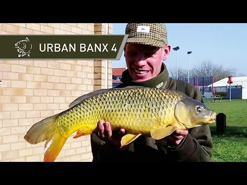 Carp Fishing Tips - Urban Banx 4 with Alan Blair - Northlands Park Basildon - Nash Tackle