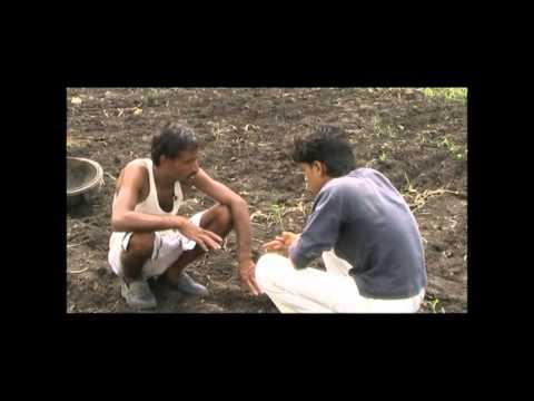 Hybrid Chilli Cultivation Hindi Access Madhyapradesh