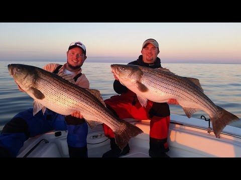 Epic striper fishing on the chesapeake bay fishing city for Striper fishing chesapeake bay