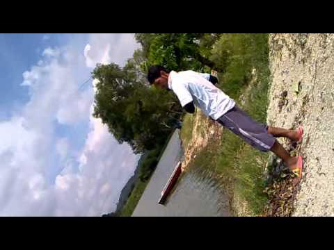 Kundang Lake Fishing Patin 14kg Kok Fishing Kundang
