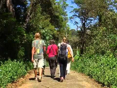 Gavi Eco Tourism, Wild life sanctury and hill station, Kerala, India
