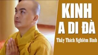Tụng Kinh A Di Đà - Kinh Phật Giáo Hay Nhất (Thích Nghiêm Bình)