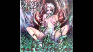Watch Cannibal Corpse Confessions video
