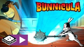 Bunnicula | No More Bunnicula Adventures | Boomerang UK 🇬🇧