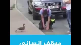 #شاهد موقف انساني في التعامل مع الطيور