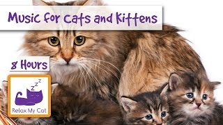 download lagu 8 Hours Of Relaxing  For Cats And Kittens gratis