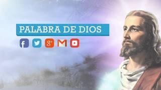 Génesis Capítulo 9 de 50 - AUDIOLIBRO - La Biblia Hablada Completa en Español - HQ