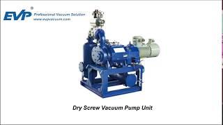 Dry screw vacuum pump installation