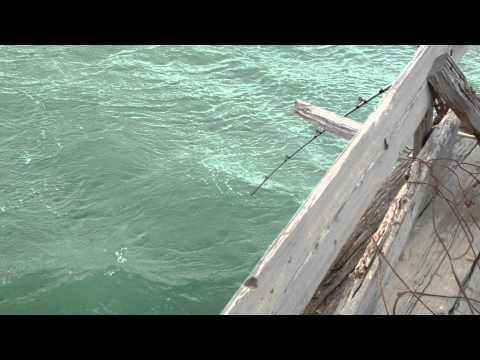 рыбалка на каспийском море с берега