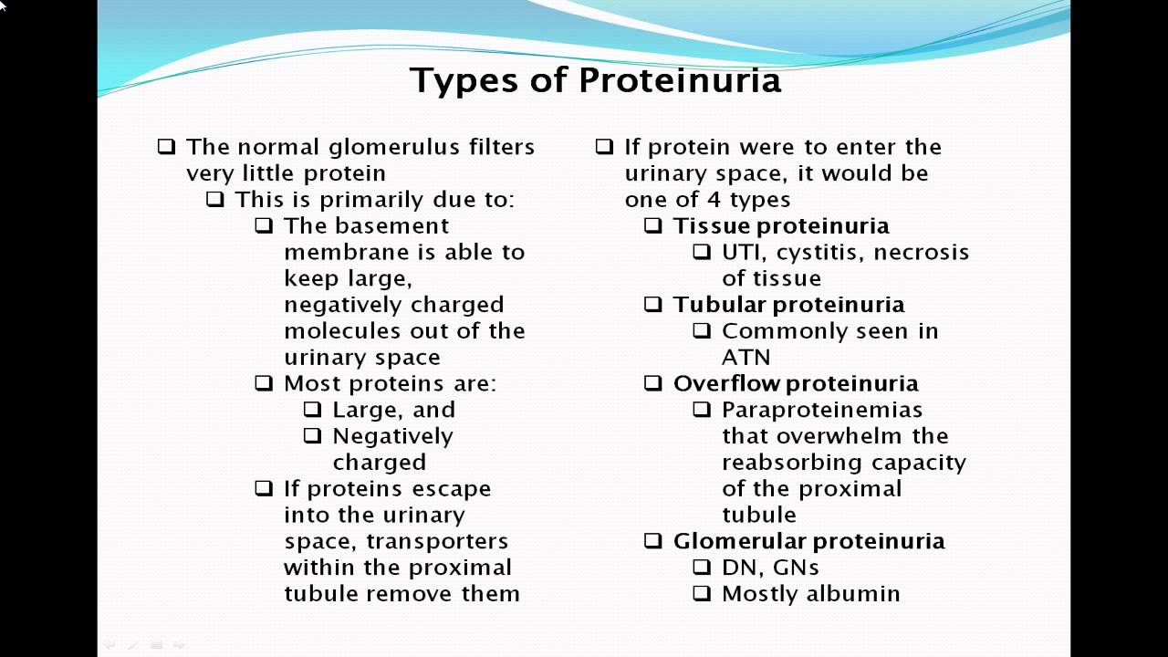 what is diabetic nephropathy pdf