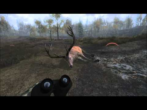 The Hunter 2013 PC Muzzleloader red deer bull