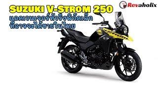 Suzuki V-Strom 250 แอดเวนเจอร์ทัวริ่งพิกัดเล็กที่อาจจะได้ขายในไทย | Revaholix
