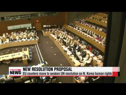EU reacts to Cuba′s attempt to water down UN resolution on N. Korea human rights