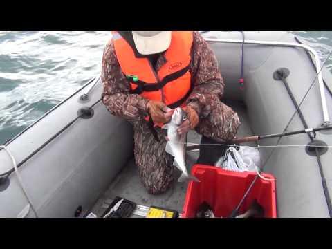особая морская рыбалка слодке смотреть видио Нячанга самый