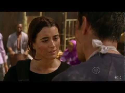 Ziva's Successor: 'ncis' Looks For A Cote De Pablo Replacement