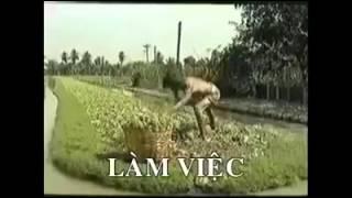 Video Clip Giờ mới hiểu vì sao kinh tế Việt Nam bị Campuchia vượt mặt