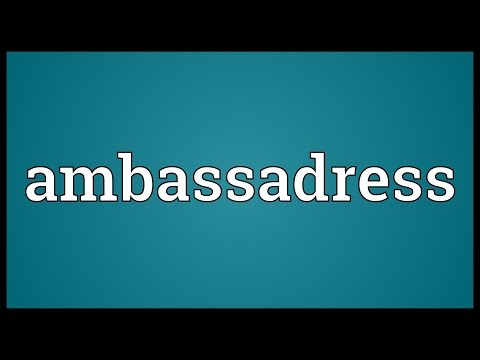 Header of ambassadress