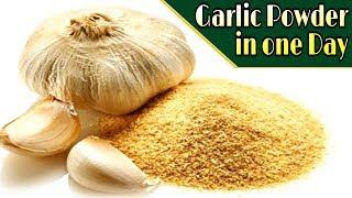 सिर्फ एक ही दिन में बनाएं लहसुन पाउडर   Garlic Powder in one day   Anjli's Kitchen