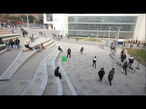 BIG Harlem Shake: University Of Exeter