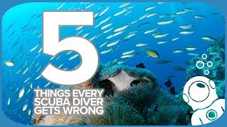 5 Things Every Scuba Diver Gets Wrong