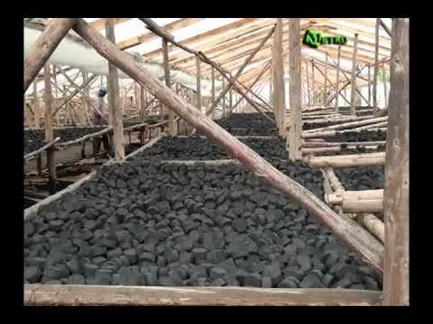 From waste to Briketi project - Green Bio Energy