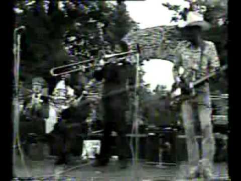 Clarence Gatemouth Brown - Nice 1978