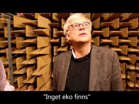 Mardrömmarnas rum på Sveriges Radio där ingen kan höra dig skrika