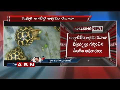 DRI seized 1125 star tortoises in Vizag railway station