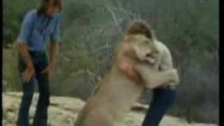 Christian the Lion - from cub to reunion, set to music & auroras - www.TheTransformedMan.me