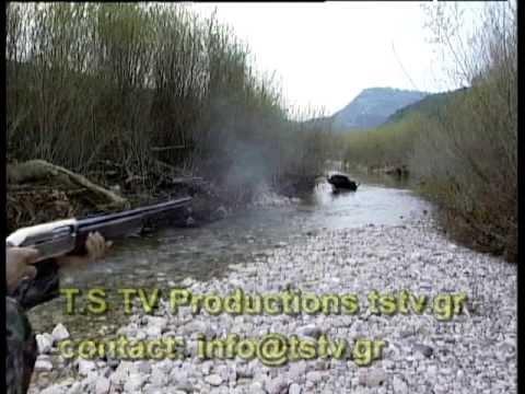 KYNHΓΙ ΑΓΡΙΟΓΟΥΡΟΥΝΟΥ No 4  Wild Boar Hunting No4