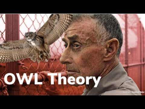 The Staircase | Owl Theory