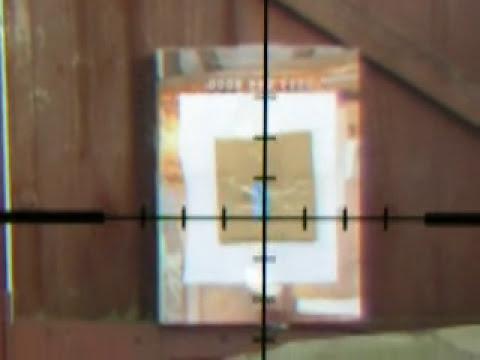Weihrauch HW100S .177.   5 shots taken at target in garden.