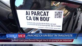 PARCHEZ CA UN BOU IN TARGOVISTE - MDI TV